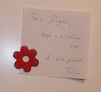 Irodamágnes kisvirág 2 neodym mágnessel. Hűtőmágnes